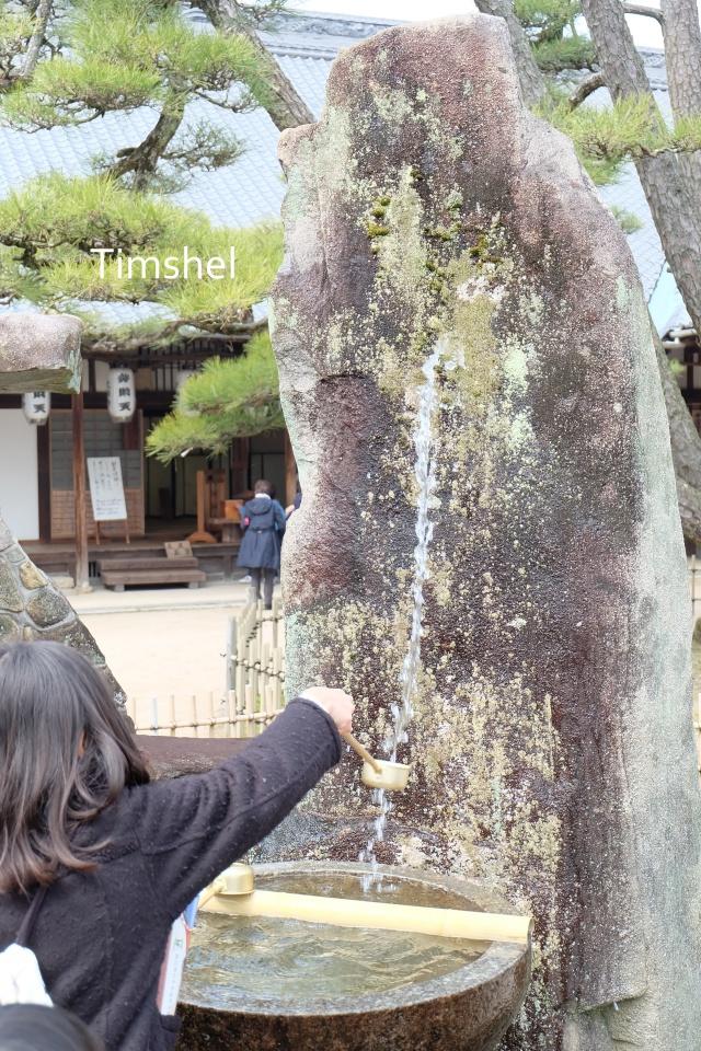 大願寺の龍神様