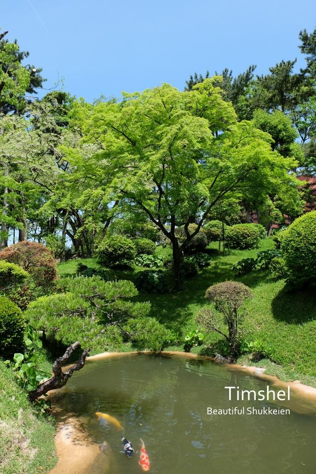 縮景園茶室