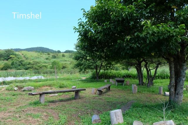 芸北農園4